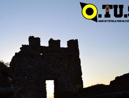 Gufi al castello di Siliqua – domenica 6 agosto 2017